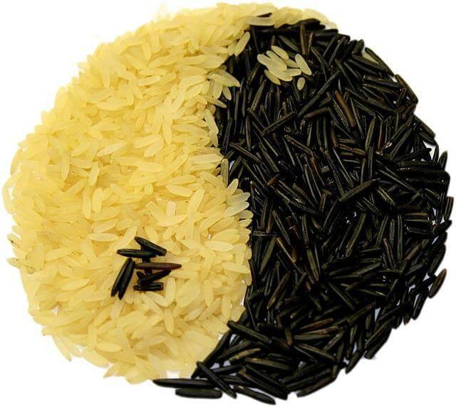 Die 5 Elemente Ernährung verwendet viel Reis, der das Yin Yang Symbol formt.
